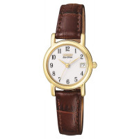 Citizen Ladies Gold Plated Strap Watch EW1272-01A